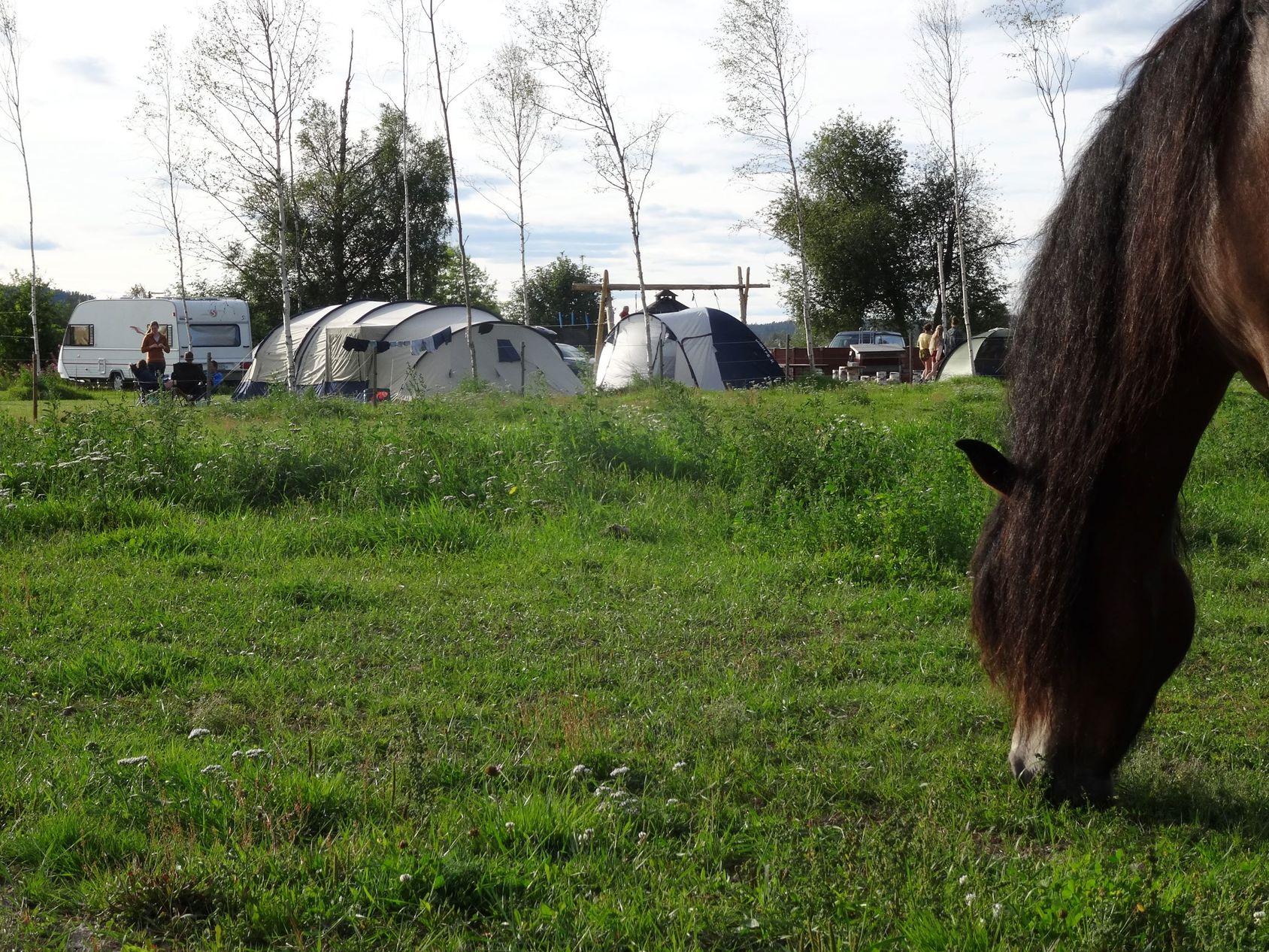 Camping Sun Dance Ranch Ab