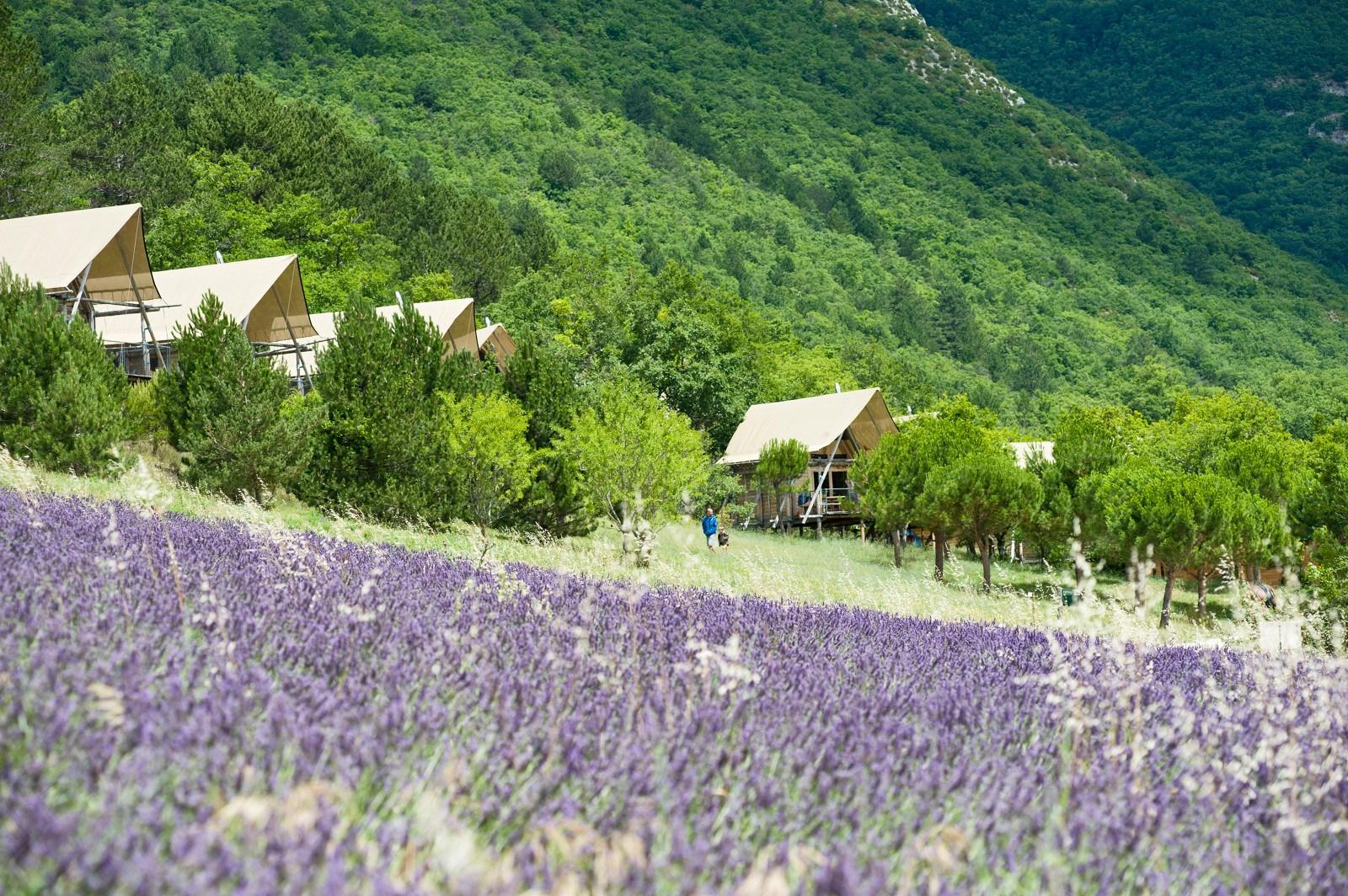 Frankrijk-Dieulefit-Village%20Huttopia%20Dieulefit-ExtraLarge Campings Frankrijk