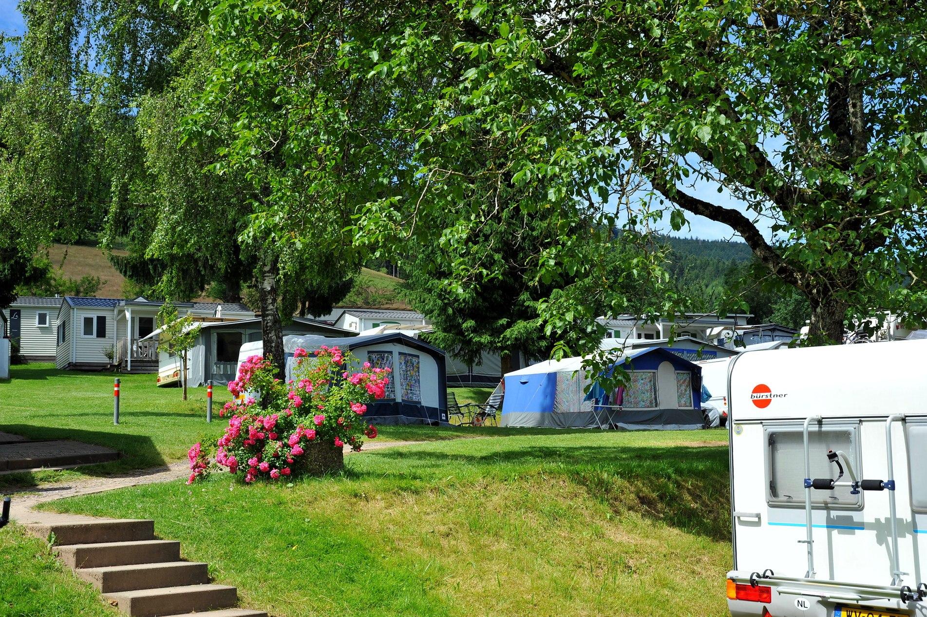 Duitsland-Simonswald-Camping%20Schwarzwaldhorn-ExtraLarge Campings Duitsland