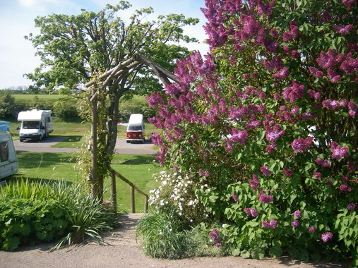Camping & Caravaning Golden Square