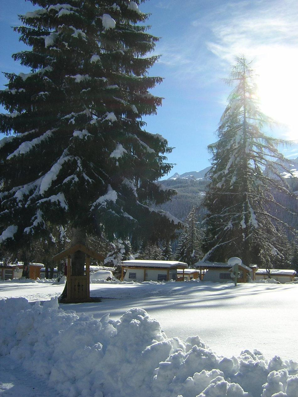 Camping & Resort Fiemme Village