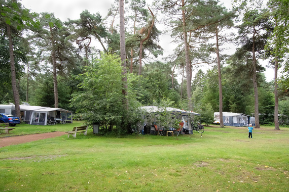 Camping Diever