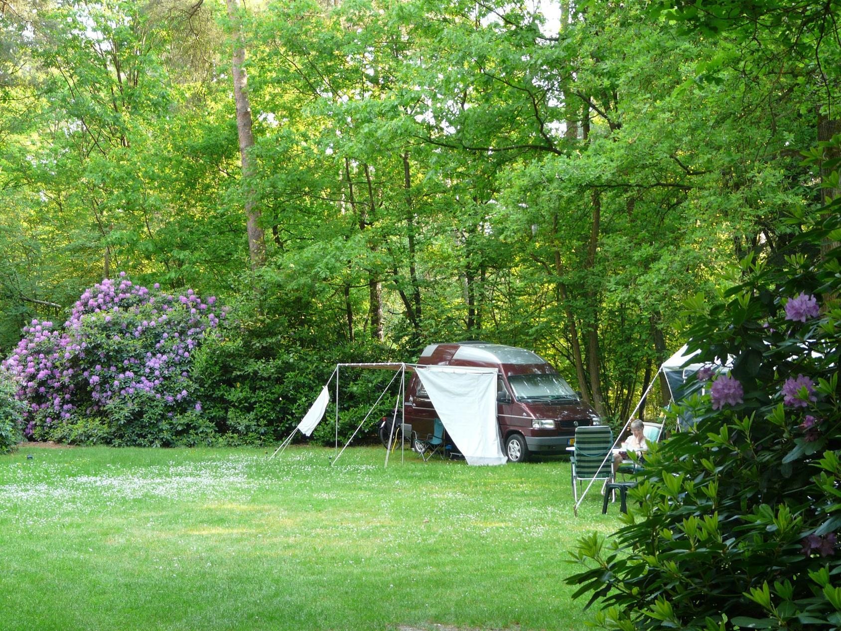 487e4a4bc43 Camping Morgenrood - Noord-Brabant - Nederland | ANWB Camping