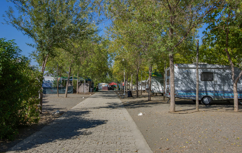 Spanje-Iznate-Camping%20Iznate-ExtraLarge Campings Spanje